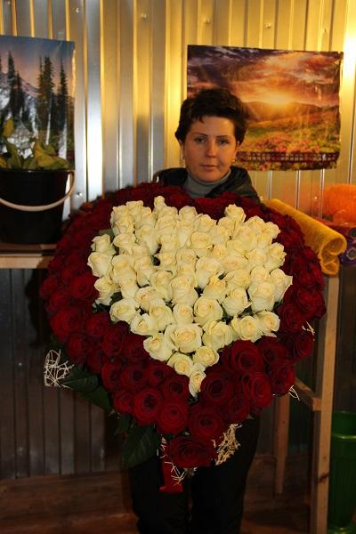 Купить в липецке розы
